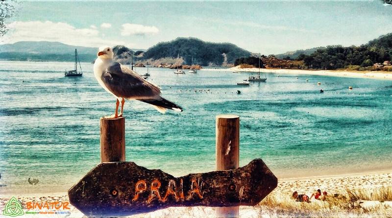vacaciones y familia en portugal